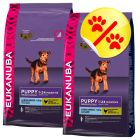 Dubbelpack Eukanuba Puppy Large Breed Chicken