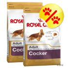 Dubbelpack Royal Canin Cocker Adult