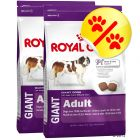 Dubbelpack Royal Canin Giant Adult