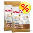 Dubbelpack Royal Canin Labrador Retriever Adult