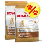 Dubbelpack Royal Canin Labrador Retriever Junior