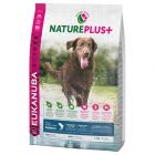 Eukanuba NaturePlus+ Adult Large Breed con salmón