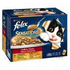 Felix Sensations in salsa 12 x 100 g