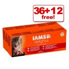 85g IAMS Delights Wet Cat Food - 36 + 12 Free!*