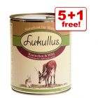 800 g Lukullus Wet Dog Food 5 + 1 Free!