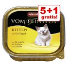 5 + 1 gratis! Animonda vom Feinsten Kitten, 6 x 100 g