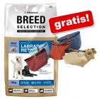 Großgebinde Wildsterne Breed Selection + Futterbeutel gratis!