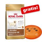 Grote zak Royal Canin Breed + Trixie Dog Activity Disc