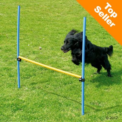Avis sur haie agility pour chien fun sport sport canin for Agility au jardin