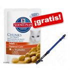 Hill's Feline 24 x 100 g + Collar My Home azul ¡gratis!