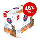 Hill's Feline Young Adult Sterilised Voordeelpak 48 x 85 g