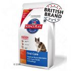 Hill's Science Plan Adult Cat Oral Care - Chicken