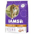 Iams Kitten & Junior Riche en poulet pour chaton