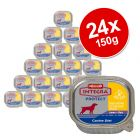 Integra Protect Sensitive Saver Pack 24 x 150g