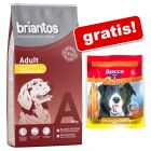 14 kg Briantos Droogvoer + Rocco Chings gratis!