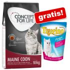 10 kg Concept for Life Maine Coon Adult + 5 l Tigerino XXL
