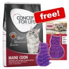 3kg Concept for Life Maine Coon + KONG Groom Brush Free!*