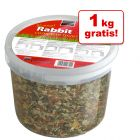 3,5 + 1 kg gratis! 4,5 kg Russel Rabbit Original Conigli
