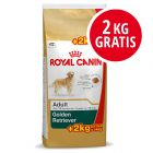12 + 2 kg gratis Royal Canin Breed