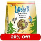 1kg Lillebro Dried Mealworms - 20% Off!*