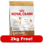 12kg Royal Canin Breed Dry Dog Food + 2kg Free!*