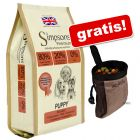 12 kg Simpsons Premium + Dog Activity Baggy Deluxe gratis!