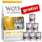 12 kg Wolf of Wilderness, Adult / Junior + karma mokra Wild Hills, 6 x 400 g gratis!
