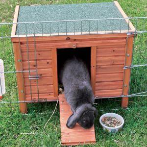 Entretenir un clapier en bois pour rongeur conseils zooplus - Casetta per conigli ...