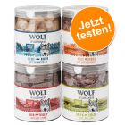 Knaller: Wolf of Wilderness - Gefriergetrocknete Premium-Snacks