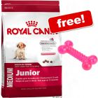Large Bag Royal Canin Size + Thermoplastic Rubber Bone Free!