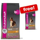 Large Bags Eukanuba Dry Dog Food + Small Bags Free!