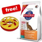 Large Bags Hill's Science Plan + Roundabout Cat Toy Free!