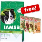 Large Bags Iams Dry Dog Food + 8in1 Minis Free!*