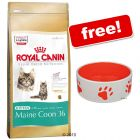Large Bags Royal Canin Breed + Ceramic Cat Bowl Free!