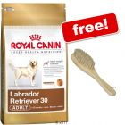 Large Bags Royal Canin Breed + Pet Brush Free!