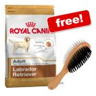 Large Bags Royal Canin Breed + Trixie Brush Free!