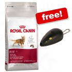 Large Bags Royal Canin Feline + Trixie Laser Pointer Free!