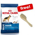 Large Bags Royal Canin Size + Pet Brush Free!