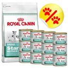 Lot mixte Royal Canin Starter Mother & Babydog
