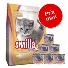 Lot mixte Smilla Sélection Kitten pour chaton