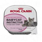 Mousses pour chaton Royal Canin Babycat Instinctive