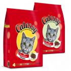 Offerta prova mista Catessy Adult Mix