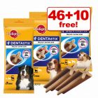 Pedigree Dentastix - 46 + 10 Free!*
