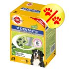 Pedigree Dentastix Fresh, L