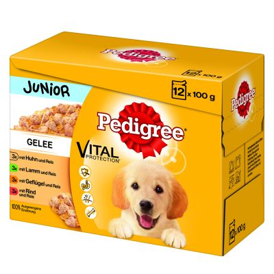 Pedigree Junior Pouch Multipack