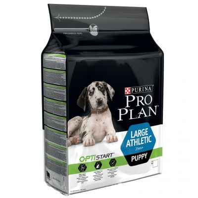Nov 07,  · Purina Pro Plan Focus Dog Food receives the Advisor's mid-tier rating of 3 stars. Purina Pro Plan Focus Adult Large Breed formula was selected to represent the other products in the line for this review. The first ingredient in this dog food is chicken. Although it is a quality item, raw chicken.