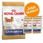 Probierpaket Royal Canin Breed Chihuahua