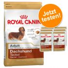 Probierpaket Royal Canin Breed Dachshund