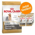 Probierpaket Royal Canin Yorkshire Terrier