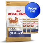 Provpack: Royal Canin Breed Chihuahua